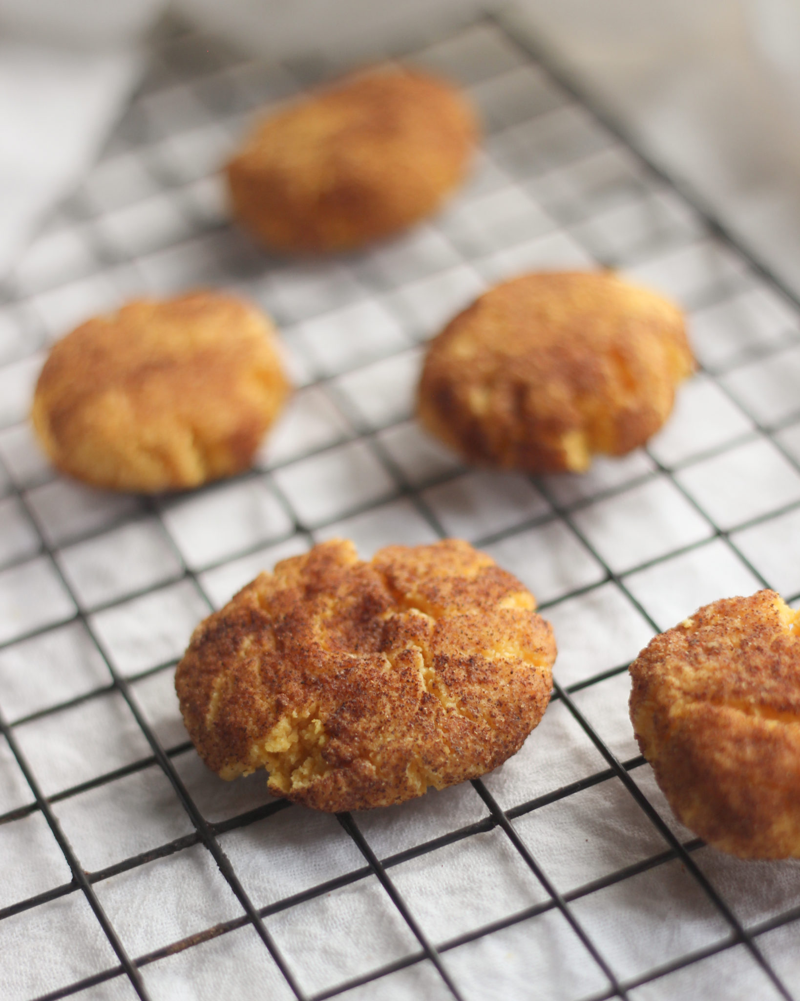 The best keto cookies that are only one carb per cookie! Made with coconut flour and pumpkin these keto cookies are perfect for low carb diets!